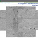 Backscatter 01